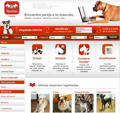 8patas captura web