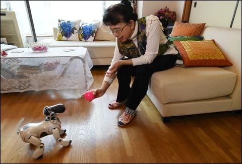 Aibo: perros robots, compañeros de vida