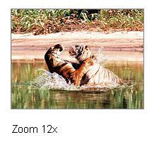 zoom-12