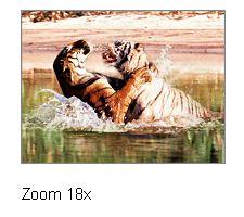 zoom-18