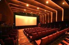 El sector cinematográfico catalán firma un manifiesto conjunto a favor de la 'Ley Sinde'
