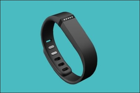 Fitbit Flex