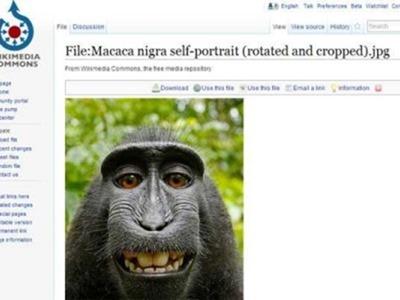 selfie-monoi-wikipedia