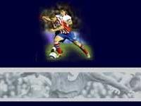 La pagina web de Fernando Torres recibió 2.288.116 descargas